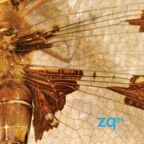 ZQ: Zigote Quarterly es el nuevo periódico especializado en Biomimética