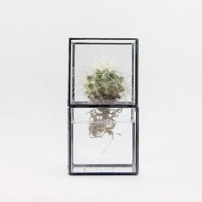 [ 10¹² ] TERRA: terrarios minimalistas