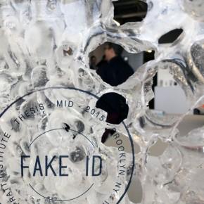 Fake ID: Tesis del Master de Diseño Industrial en Pratt Institute 2015