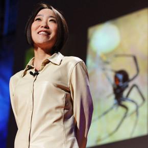Cheryl Hayashi: la magnificencia de la seda de araña