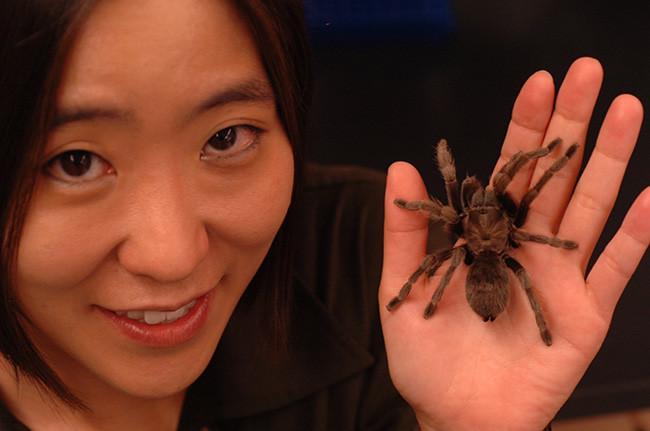 Cheryl Hayashi, PhD. [imagen: WIRED]