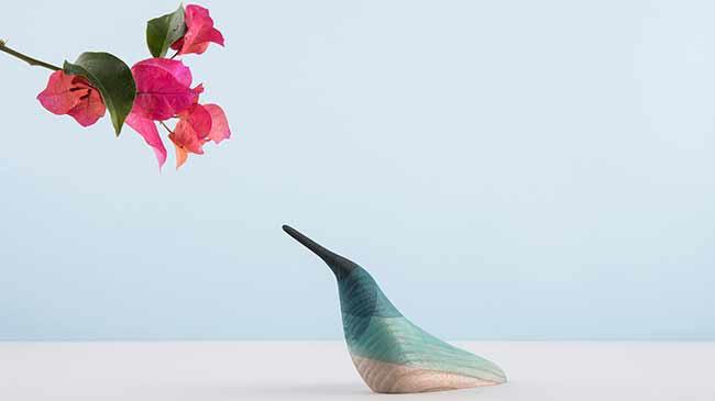 immersed_birds_moises_02